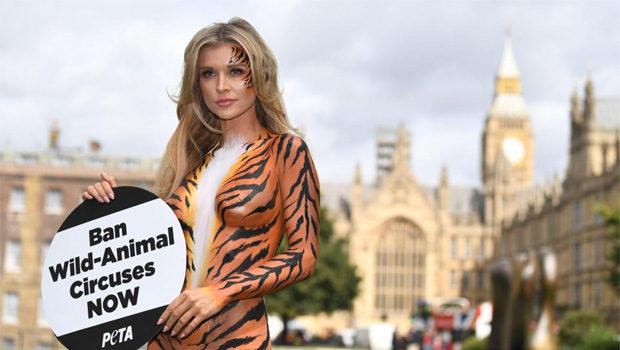 जोअना करुपा ने जानवर सर्कसों के विरोध में उठाया इतना बोल्ड कदम!